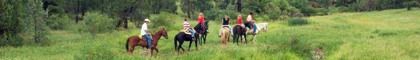 Group of People Riding Horses in Nature