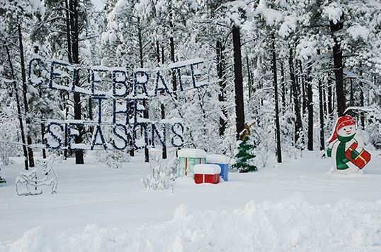"Snow Covered Trees with Ornamental Hanging Which Reads, ""Celebrate the Seasons"""