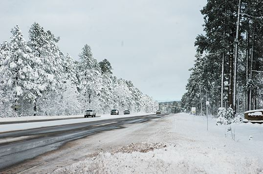 Vehicles Driving on Snowy Highway, Snow-Covered Trees on Either Side